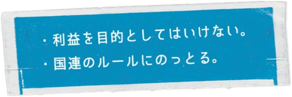 【国連ガイドライン】