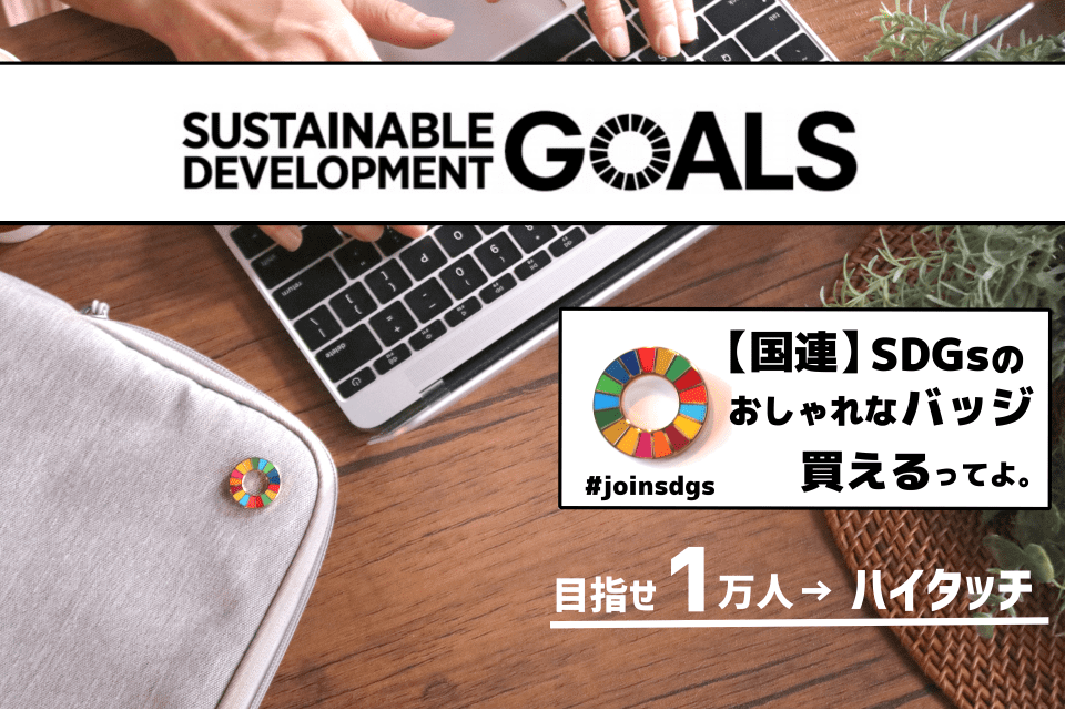 【国連】SDGsのおしゃれなピンバッジ買えるってよ。目指せ1万人ハイタッチ