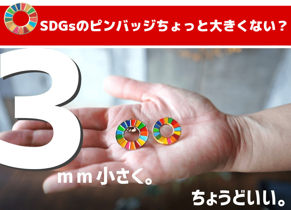 3mm小さめSDGsピンバッジ